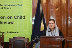 Consultation on Child Rights Legislative Review, Khyber Pakhtunkhwa