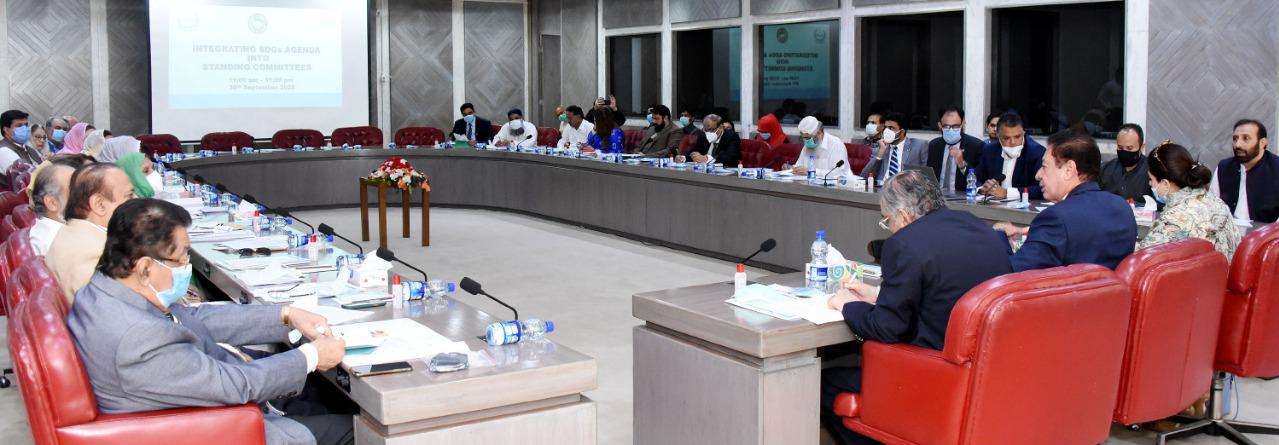Integrating SDGs agenda into Standing Committees